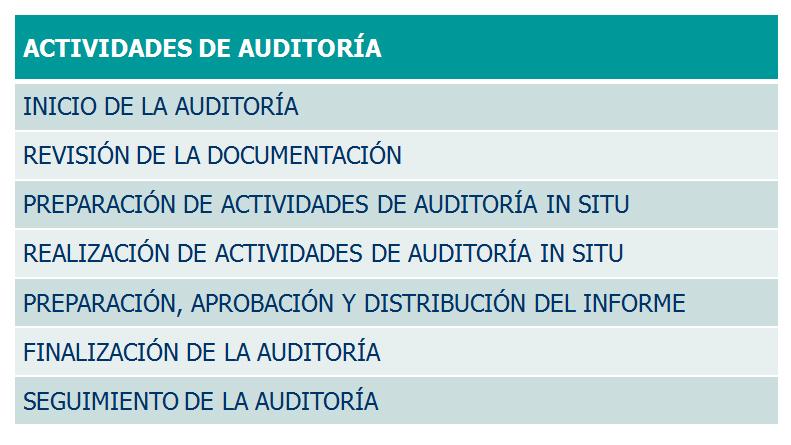 Plan de Auditoria Interna Actividades Auditoria Interna